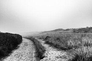 Duneroad van Danny Engelbarts