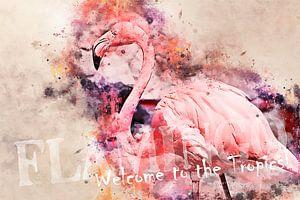 Flamingo - Welcome to the tropics!