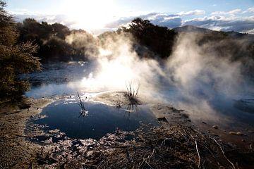 Warmwaterbron in Rotorua, Nieuw-Zeeland van Christian Müringer