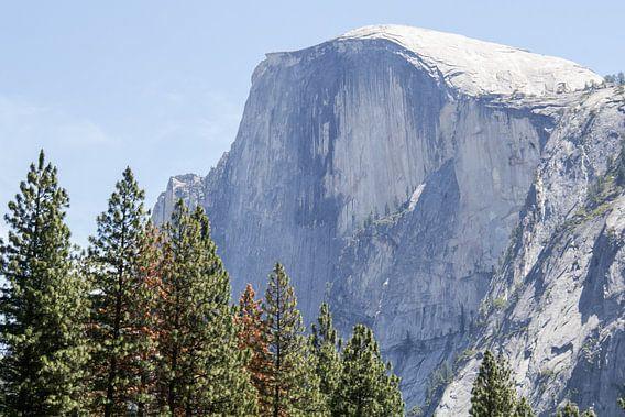 El Capitan, 900 meter hoog graniet monoliet in Yosemite Natinal Park van Henk Alblas