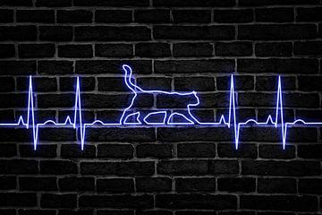Katze - Katzenliebe - Herzschlag von Felix Brönnimann