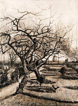 Vincent van Gogh. Wintergarten in Neunen