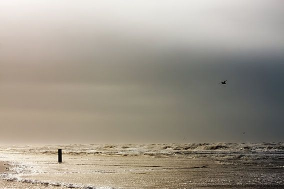 Stormachtige Noordzee strand