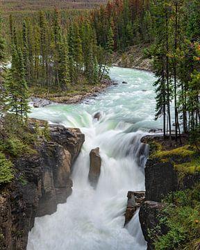 Sunwapta Falls, Icefields Parkway, Jasper National Park, Alberta, Canada van Alexander Ludwig