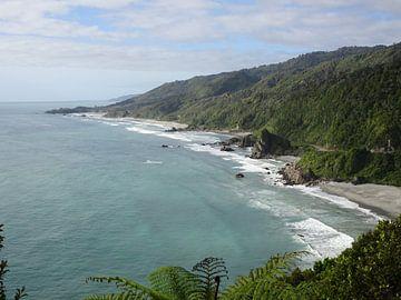Nieuw Zeeland westkust van Anne Groenendaal