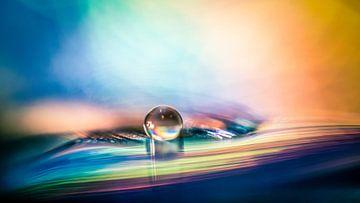 Macro d'une goutte d'eau dans un environnement coloré