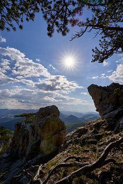 Zomerse dag in de Alpen van WittholmPhotography