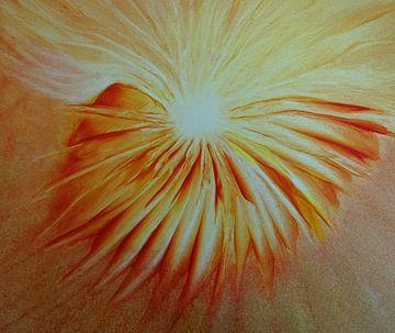 Stralende bloem van Ingrid van El