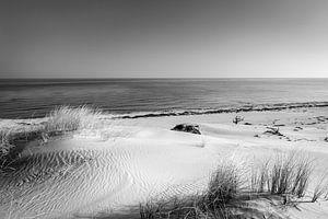 Dünen und das Meer in schwarz weiß