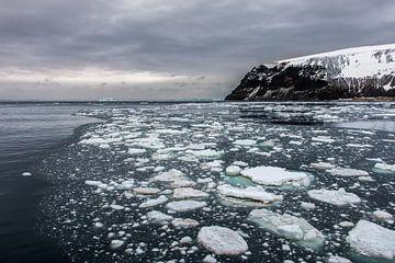 Cape Hallett - Antarctica