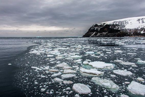 Cape Hallett - Antarctica van Eefke Smets