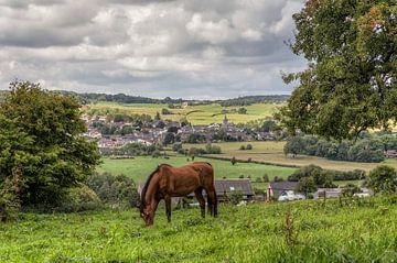 Paard in de wei bij Epen in Zuid-Limburg von John Kreukniet