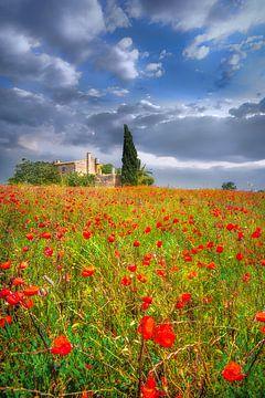 Klaprozenveld met Finca in Mallorca van Voss Fine Art Fotografie