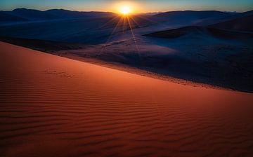 Zonlicht doet de duin glimmen van Joris Pannemans - Loris Photography