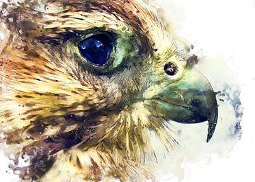 Turmfalke Vogel Aquarell Kunst #kestrel von JBJart Justyna Jaszke