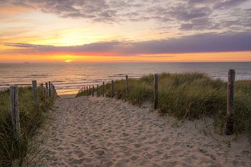 Strandopgang aan zee van Dirk van Egmond