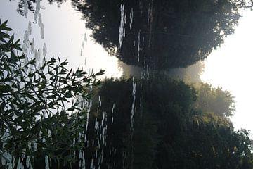 Verstild water bij het ochtendgloren van Natasja van Dwingelen