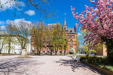Das Ständehaus in der Hansestadt Rostock im Frühling von Rico Ködder