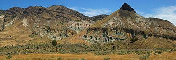 Sheep Rock, John Day Fossil Beds van Jeroen van Deel