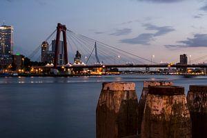 Willemsbrug Rotterdam in de avond van