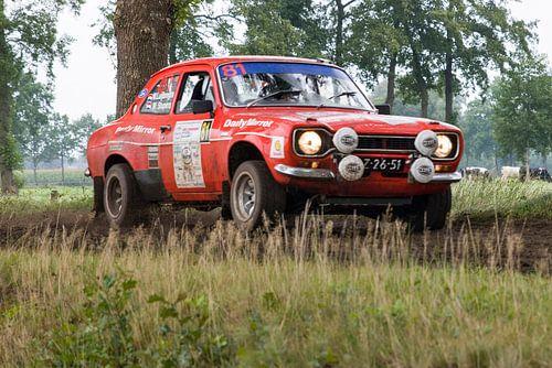 Eurol Hellendoorn Rally 10