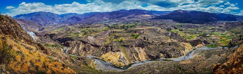 Breed panorama van de Colca Canyon, Peru van Rietje Bulthuis