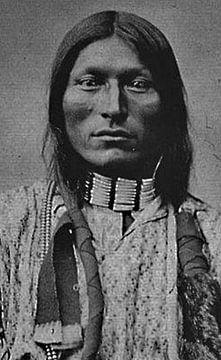 Native American (Indiaan)