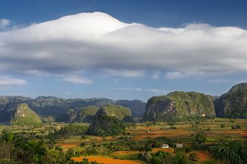 Das Viñales-Tal in Pinar del Río, Kuba. von Henk Meijer Photography