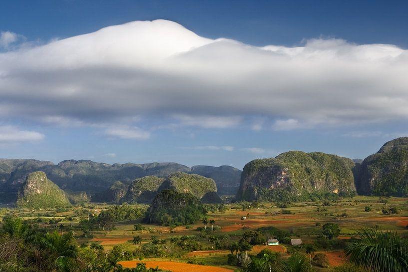 De Viñales Valley in Pinar del Río, Cuba. van Henk Meijer Photography