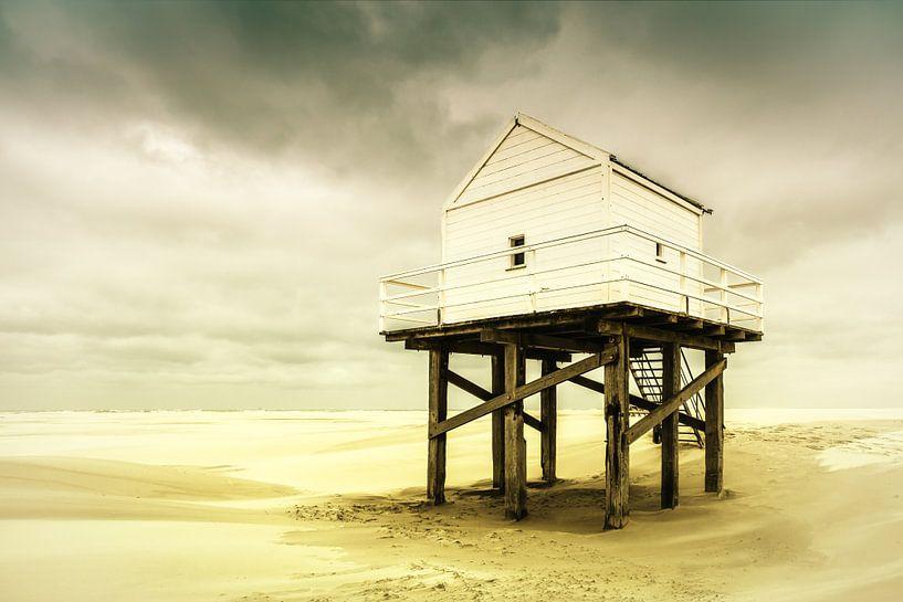 Beachcomber House van Nanouk el Gamal - Wijchers (Photonook)