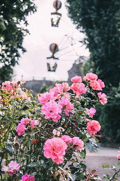 Rosen und Luftballons von Patrycja Polechonska