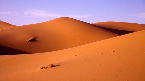 Sahara in avondlicht, Marokko  van Dirk Huijssoon