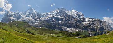 Panorama Jungfrau Region van Bart van Dinten