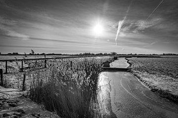 Winter in de polder! van Mariëlle Debrichy