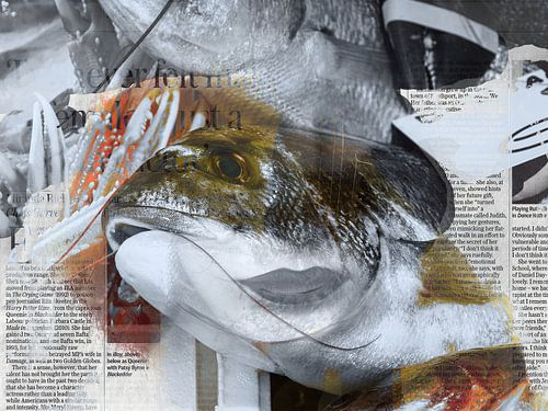 Fresh fish van Gabi Hampe