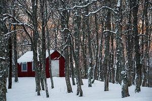 Noors hutje in de sneeuw - Vesteralen, Noorwegen