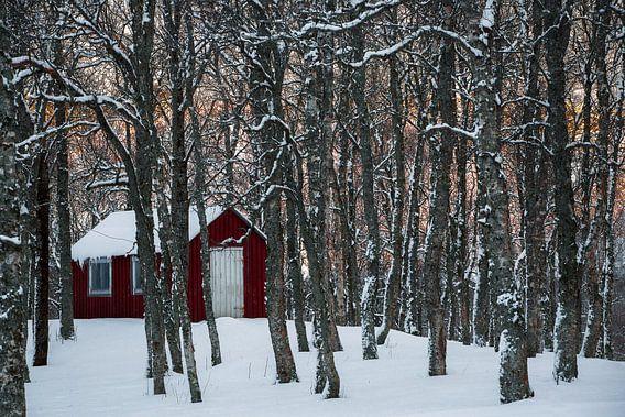 Noors hutje in de sneeuw - Vesteralen, Noorwegen van Martijn Smeets
