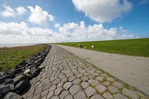 Waddenzee dijk op het eiland Terschelling van