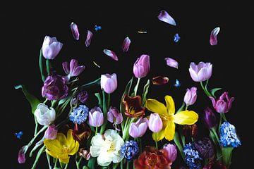 Blumenportrait-Wandkunst (Hain-Frühling) von Ineke VJ