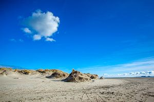 Texel Foto De Hors van