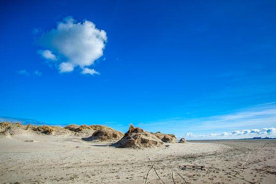 Texel Foto De Hors van Natuurlijk schoon