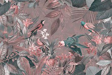 Exotisch Vögel im tropischen Regenwald sur Andrea Haase