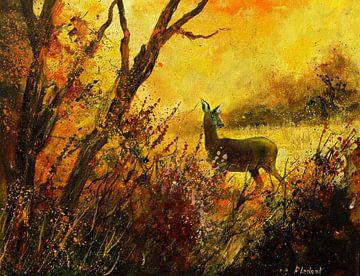 Ricke im Herbst von pol ledent