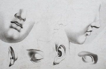 Alte Kopfstudie in verschiedenen Positionen mit Augen, Ohren und Nase in Schwarz und Weiß von Henk Vrieselaar