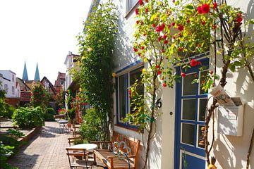 Rozencorridor, oude stad, Lübeck, Sleeswijk-Holstein van Torsten Krüger