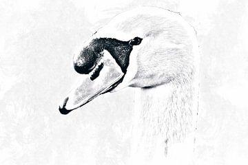 Digitale tekening van een portret van een zwaan van Nannie van der Wal