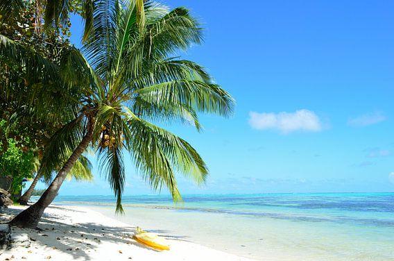 Bounty island beach