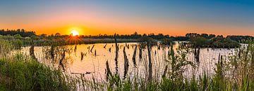 Panorama  van een zonsondergang in  nationaal park De Alde Feanen