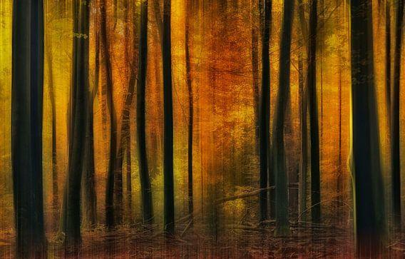 Herfstsfeer van Jan Paul Kraaij