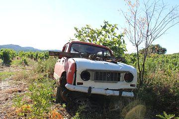 Achtergelaten Renault 4 von Angelique van 't Riet